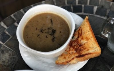 Season's Harvest Cafe Soup