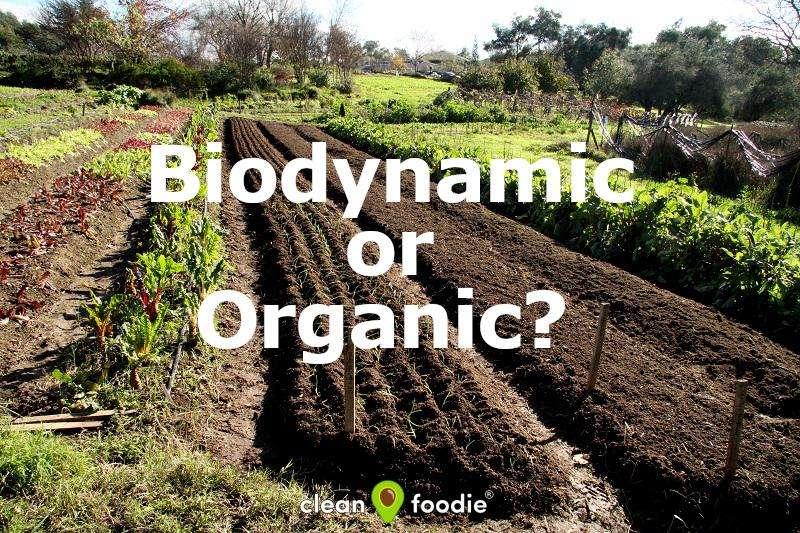 Biodynamic or Organic farming